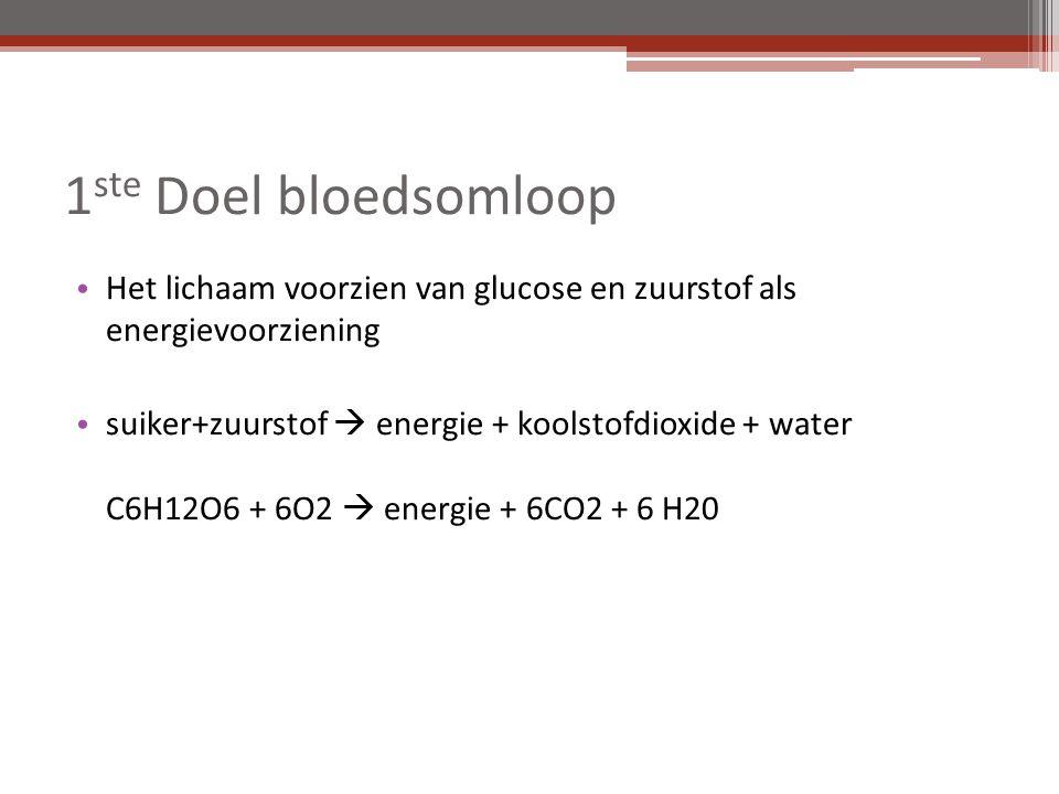 1ste Doel bloedsomloop Het lichaam voorzien van glucose en zuurstof als energievoorziening.