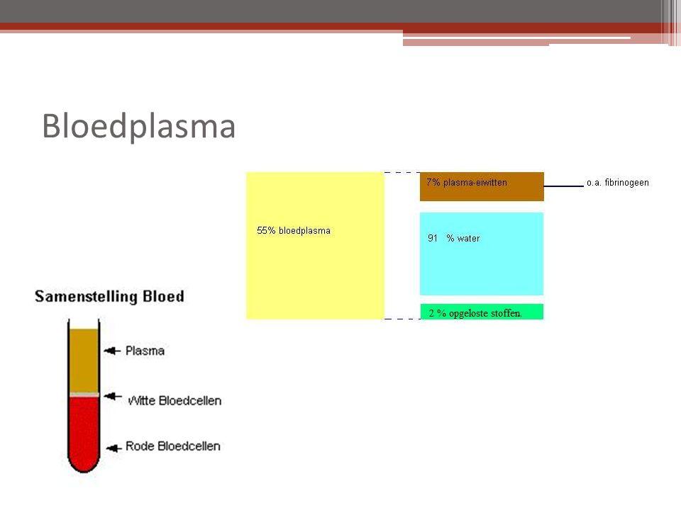 Bloedplasma