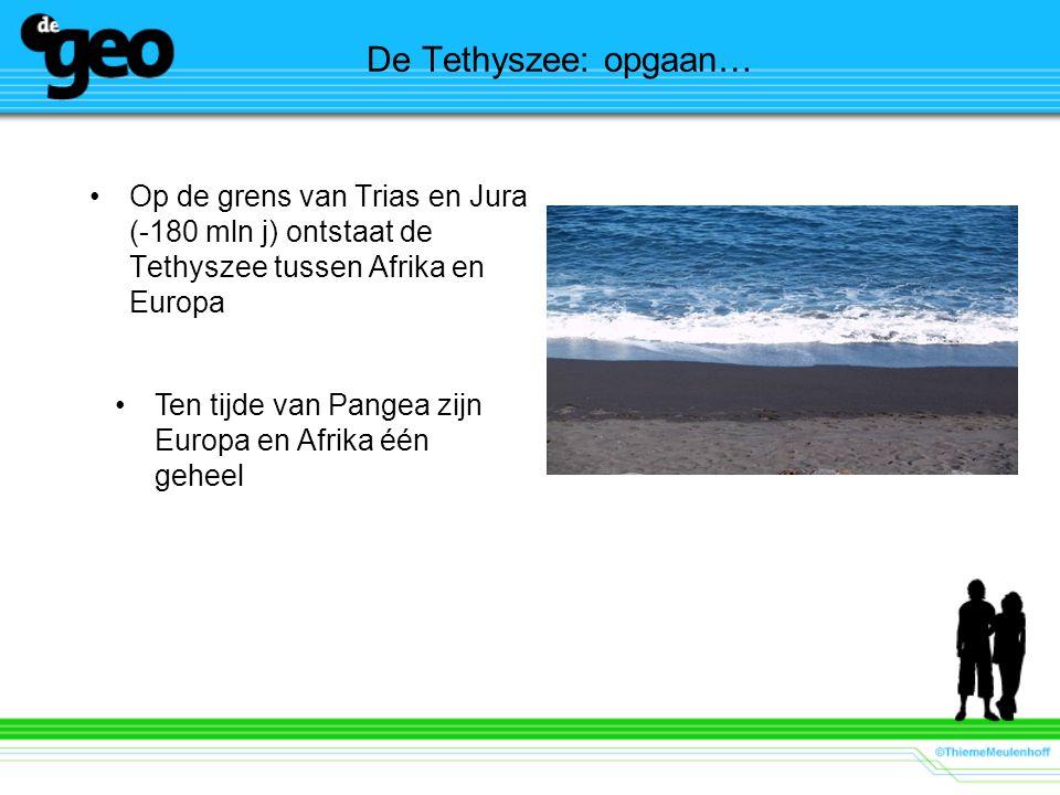 De Tethyszee: opgaan… Op de grens van Trias en Jura (-180 mln j) ontstaat de Tethyszee tussen Afrika en Europa.