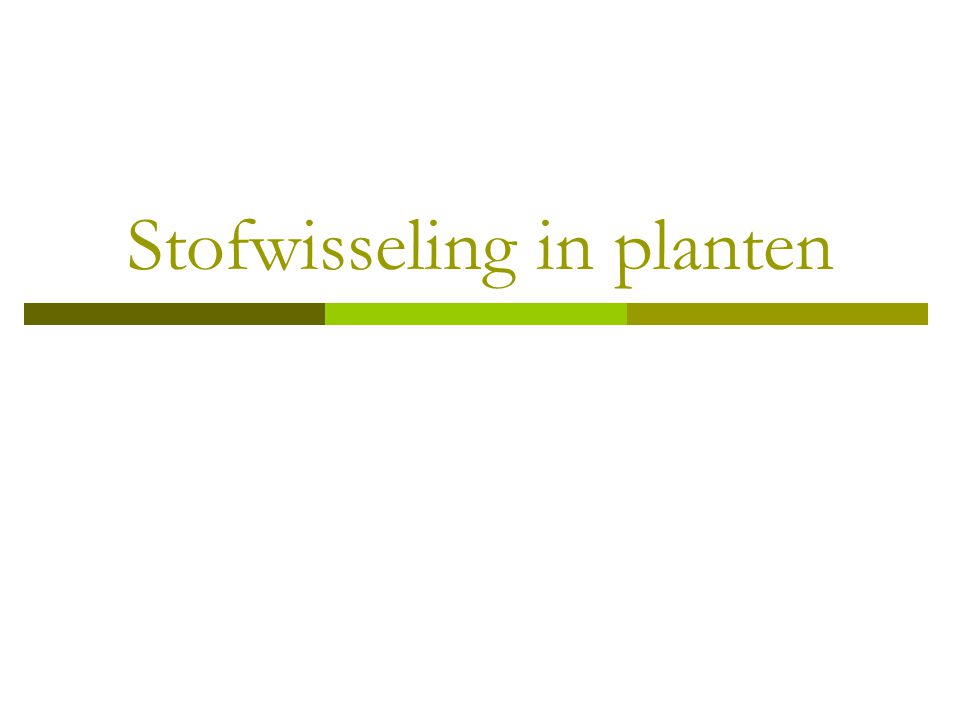 Stofwisseling in planten