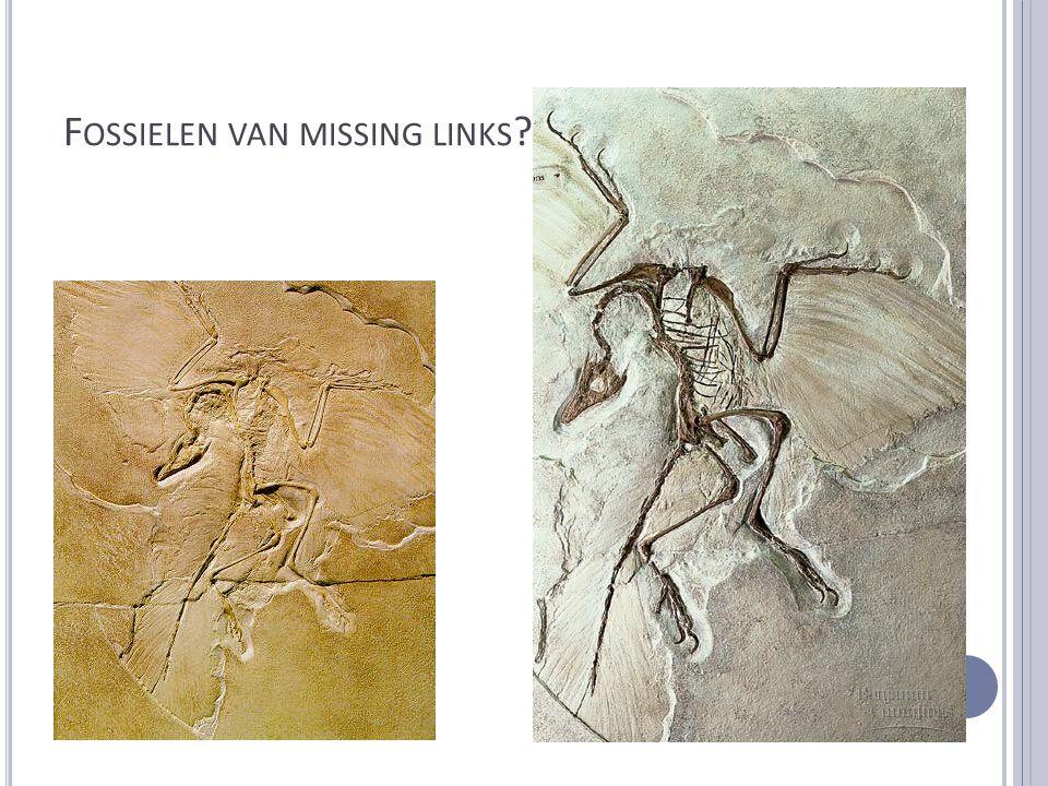 Fossielen van missing links !