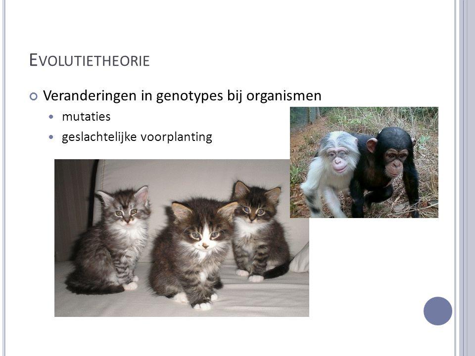 Evolutietheorie Veranderingen in genotypes bij organismen mutaties