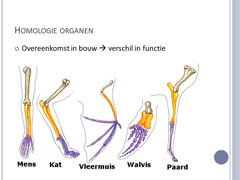 Homologie organen Overeenkomst in bouw  verschil in functie