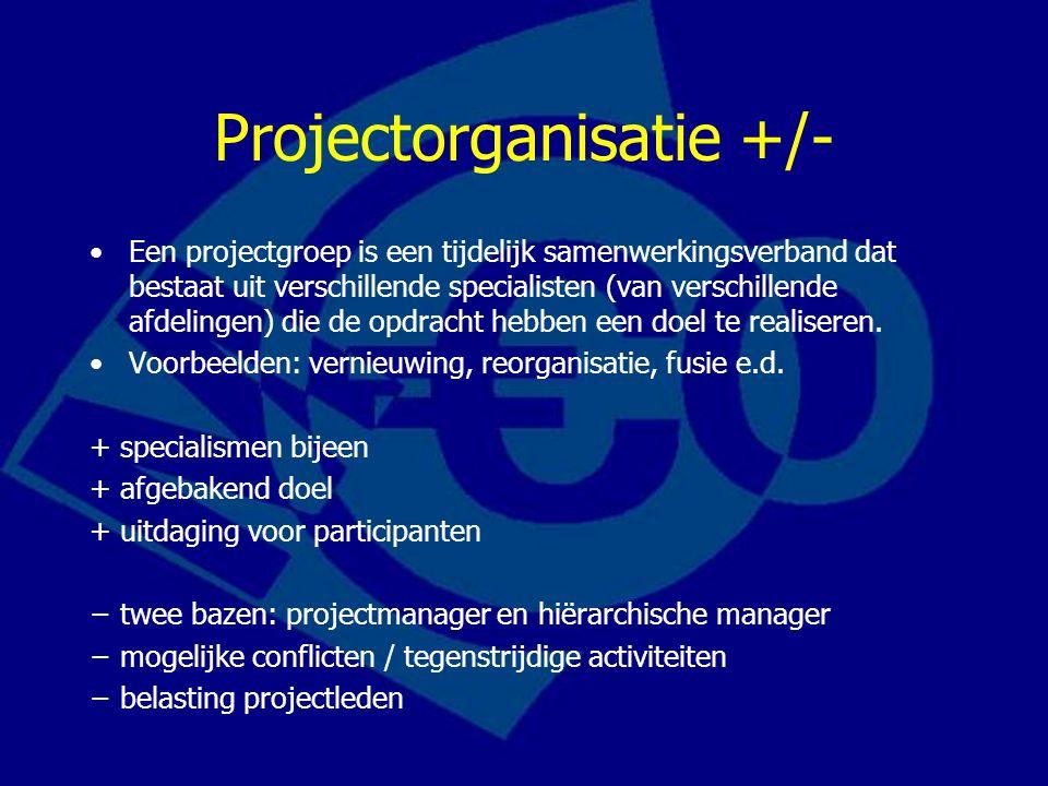 Projectorganisatie +/-