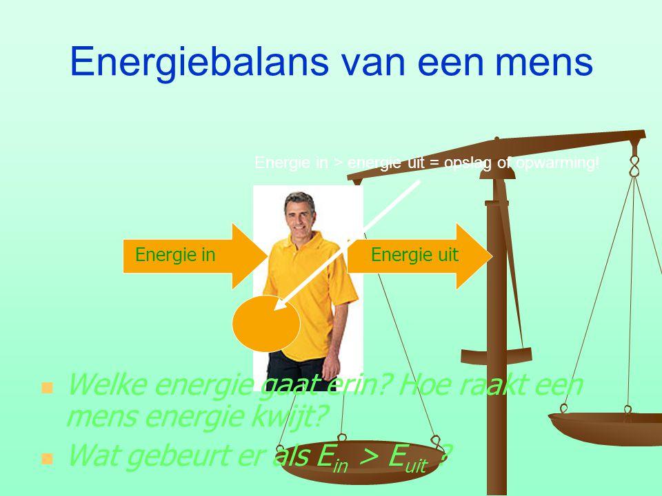Energiebalans van een mens