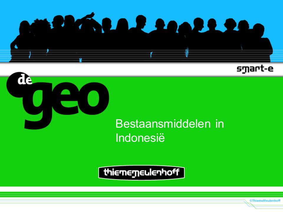 Bestaansmiddelen in Indonesië