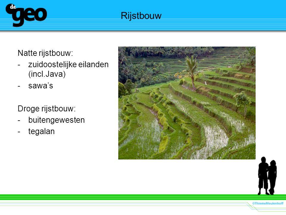 Rijstbouw Natte rijstbouw: zuidoostelijke eilanden (incl.Java) sawa's
