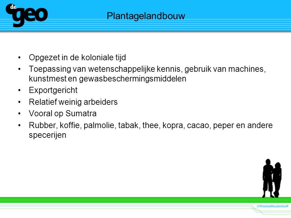 Plantagelandbouw Opgezet in de koloniale tijd