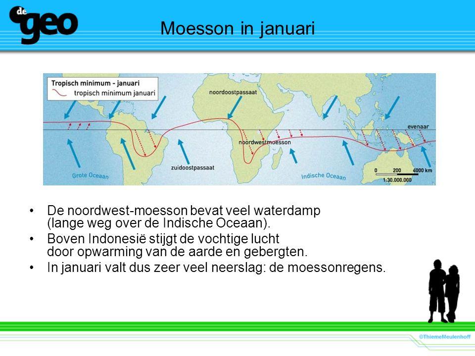 Moesson in januari De noordwest-moesson bevat veel waterdamp (lange weg over de Indische Oceaan).