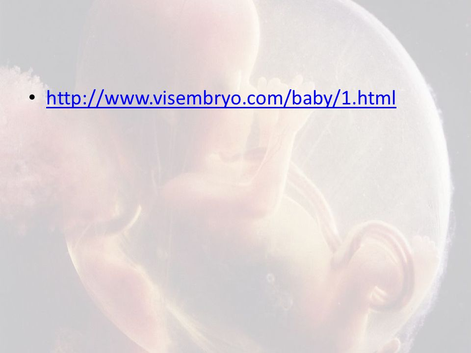 http://www.visembryo.com/baby/1.html