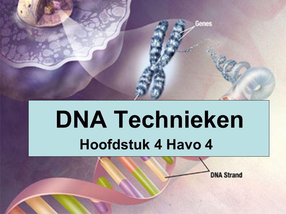 DNA Technieken Hoofdstuk 4 Havo 4