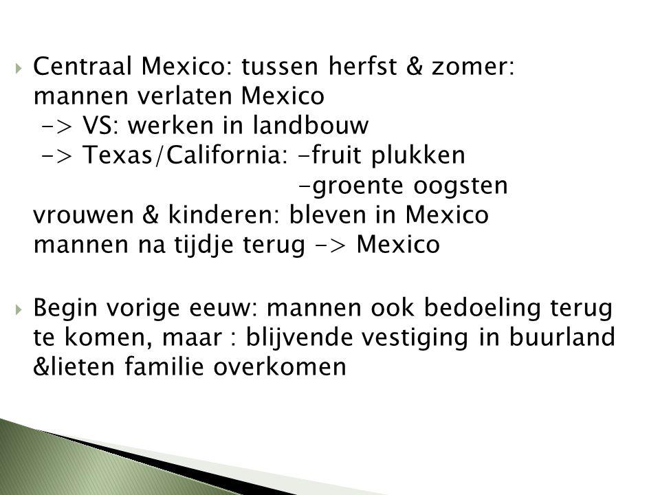 Centraal Mexico: tussen herfst & zomer: mannen verlaten Mexico -> VS: werken in landbouw -> Texas/California: -fruit plukken -groente oogsten vrouwen & kinderen: bleven in Mexico mannen na tijdje terug -> Mexico