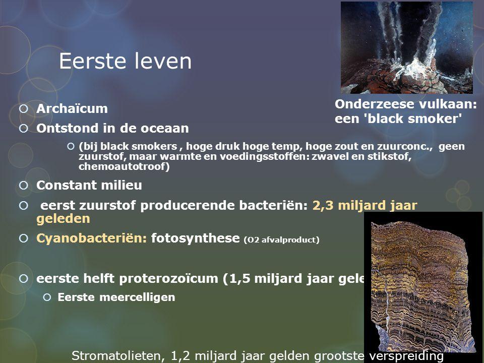 Eerste leven Onderzeese vulkaan: een black smoker Archaïcum