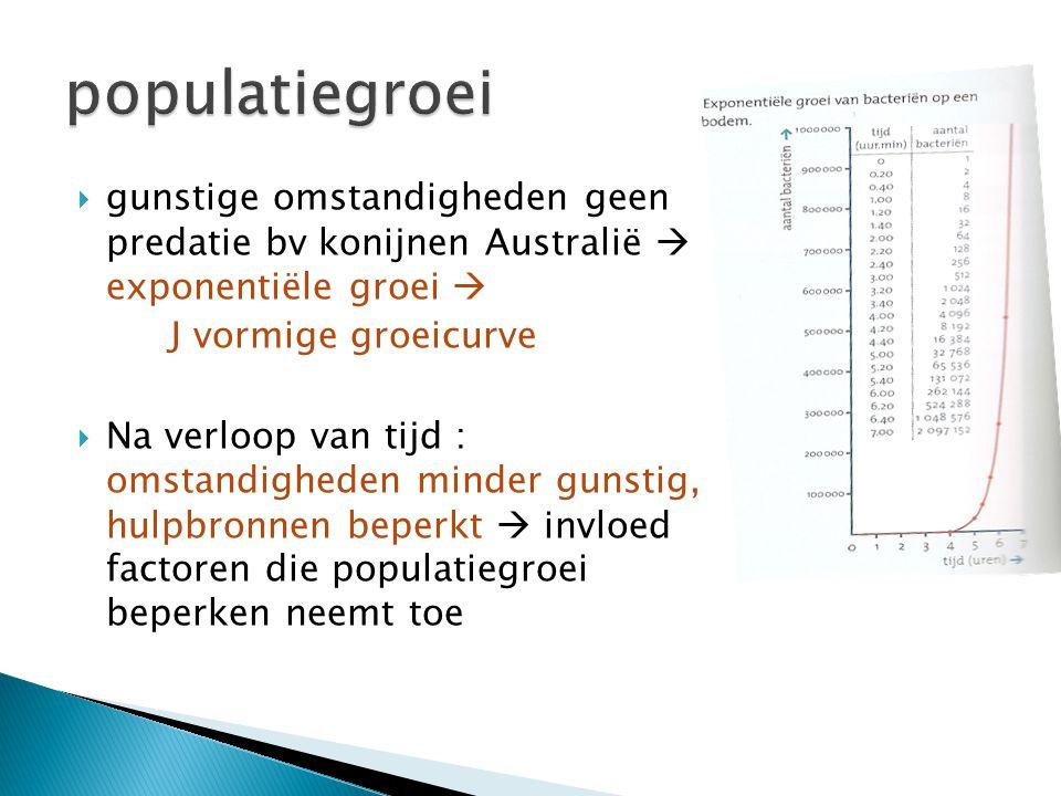 populatiegroei gunstige omstandigheden geen predatie bv konijnen Australië  exponentiële groei 