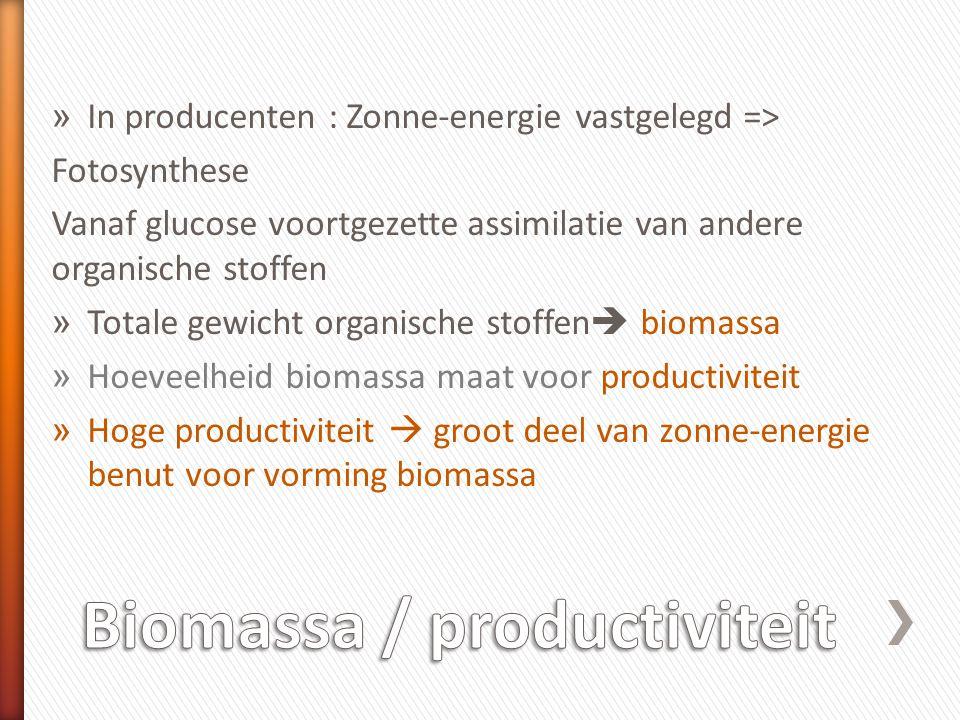 Biomassa / productiviteit