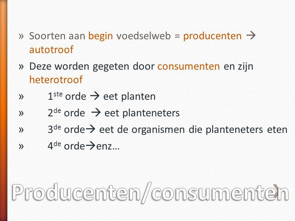 Producenten/consumenten