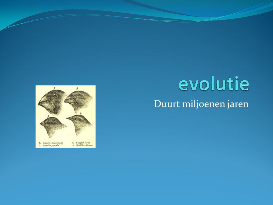 evolutie Duurt miljoenen jaren