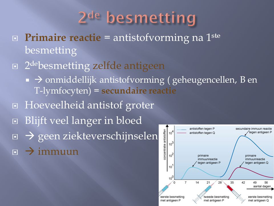 2de besmetting Primaire reactie = antistofvorming na 1ste besmetting