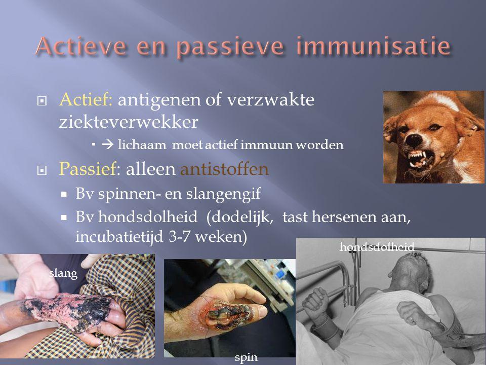 Actieve en passieve immunisatie