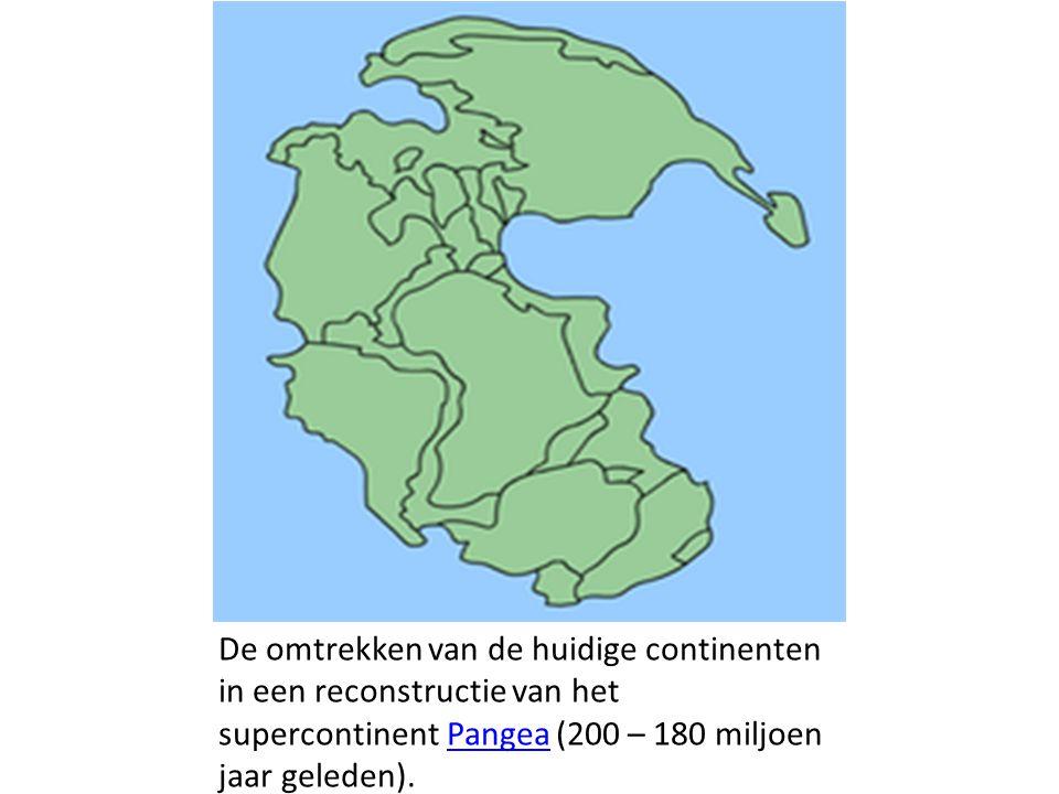 De omtrekken van de huidige continenten in een reconstructie van het supercontinent Pangea (200 – 180 miljoen jaar geleden).