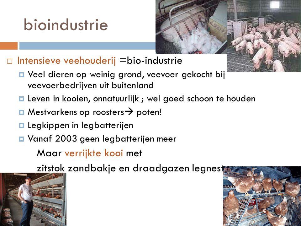 bioindustrie Intensieve veehouderij =bio-industrie