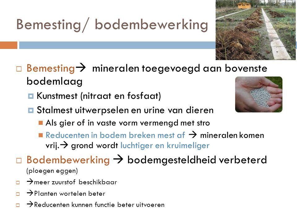 Bemesting/ bodembewerking
