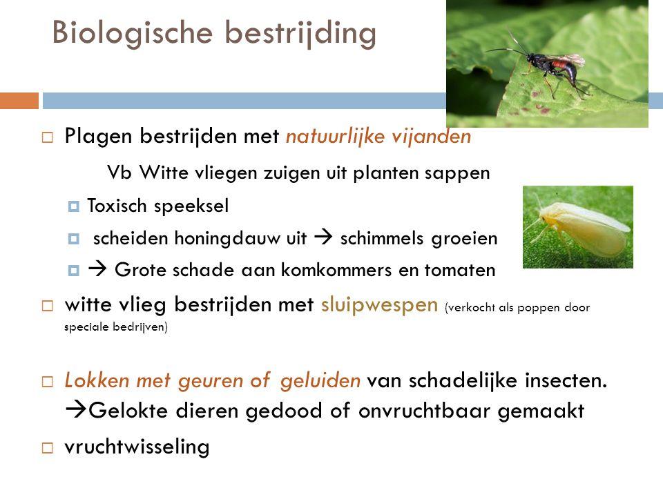 Biologische bestrijding