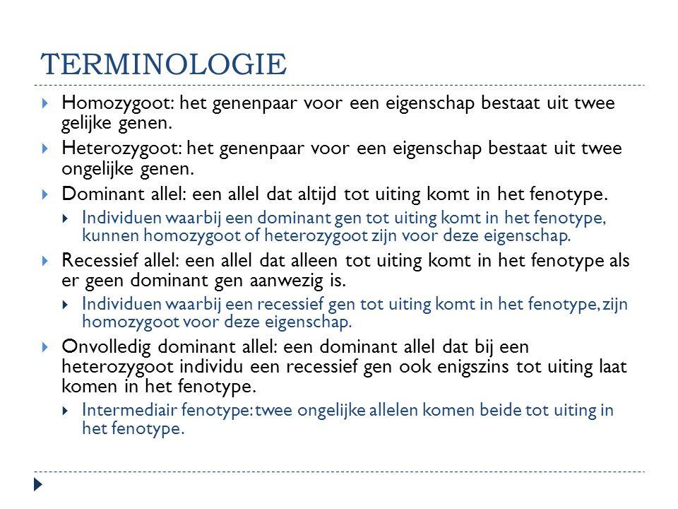 TERMINOLOGIE Homozygoot: het genenpaar voor een eigenschap bestaat uit twee gelijke genen.