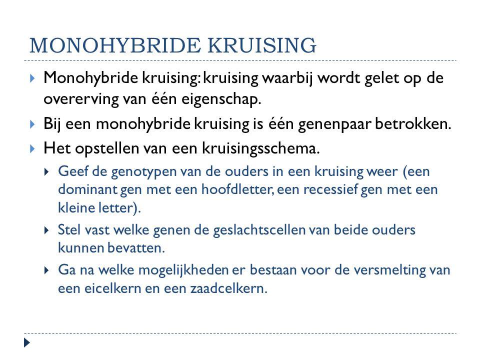 monohybride kruising Monohybride kruising: kruising waarbij wordt gelet op de overerving van één eigenschap.