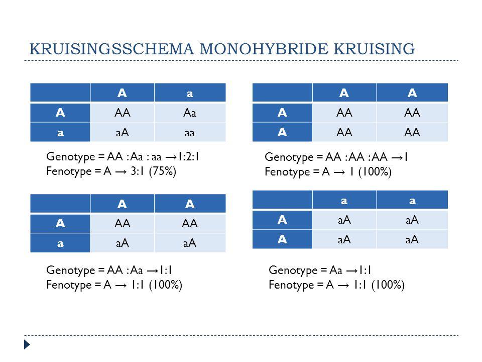Kruisingsschema monohybride kruising