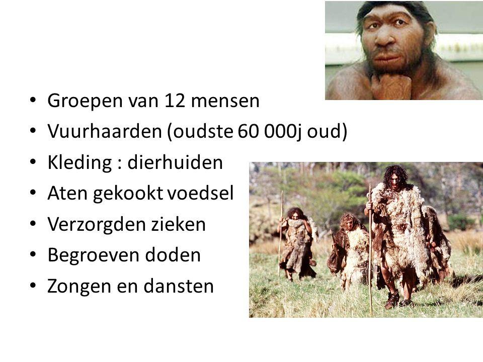 Groepen van 12 mensen Vuurhaarden (oudste 60 000j oud) Kleding : dierhuiden. Aten gekookt voedsel.