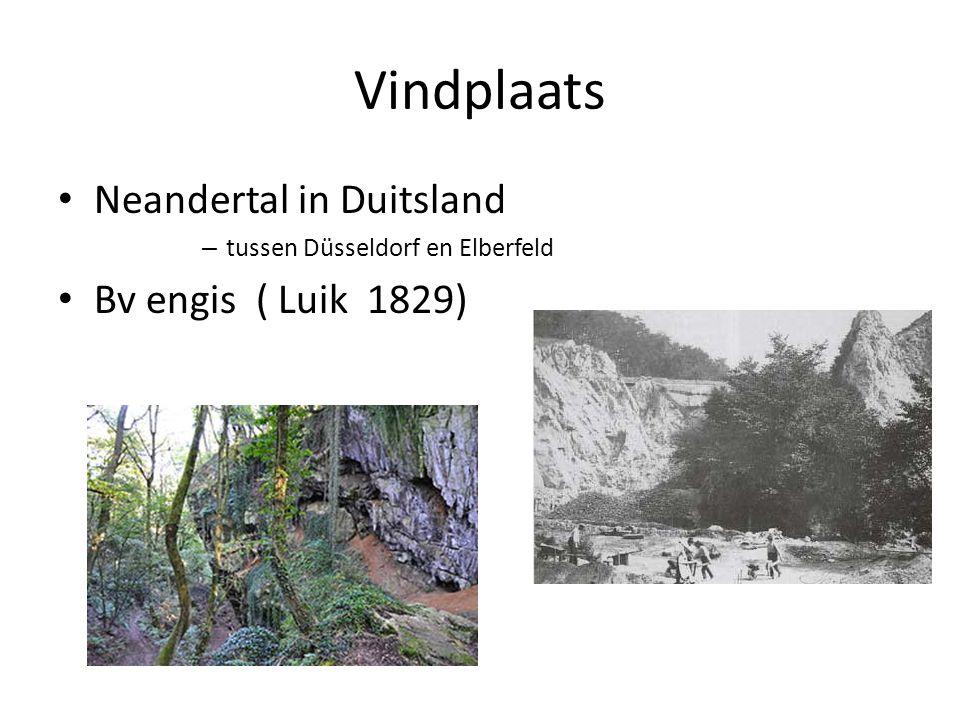Vindplaats Neandertal in Duitsland Bv engis ( Luik 1829)