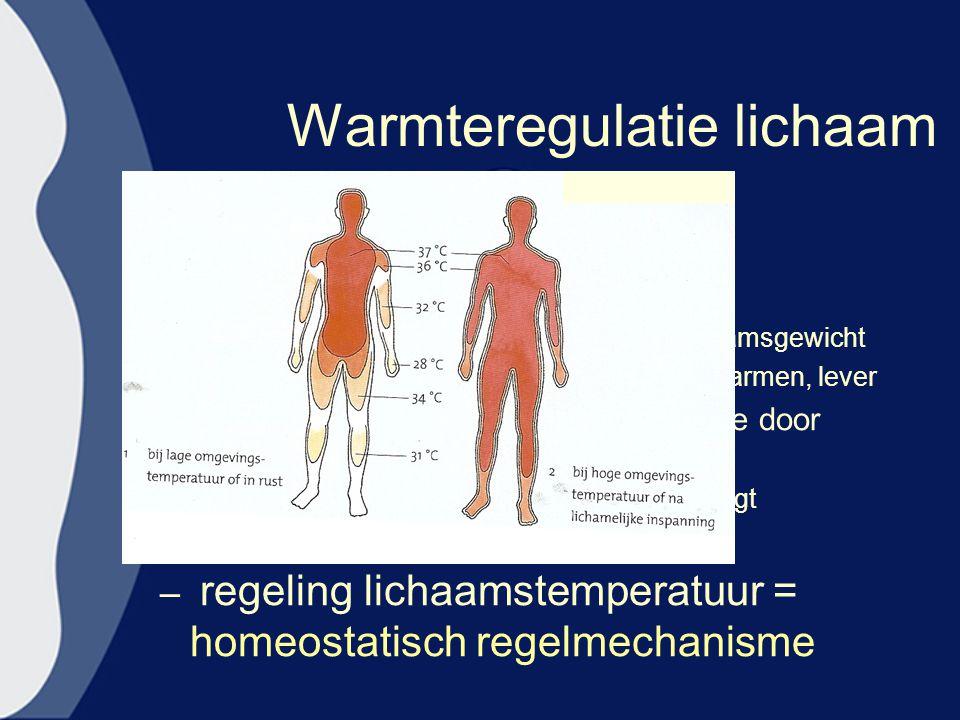 Warmteregulatie lichaam