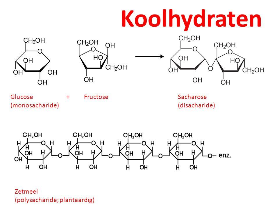 Koolhydraten Glucose + Fructose Sacharose