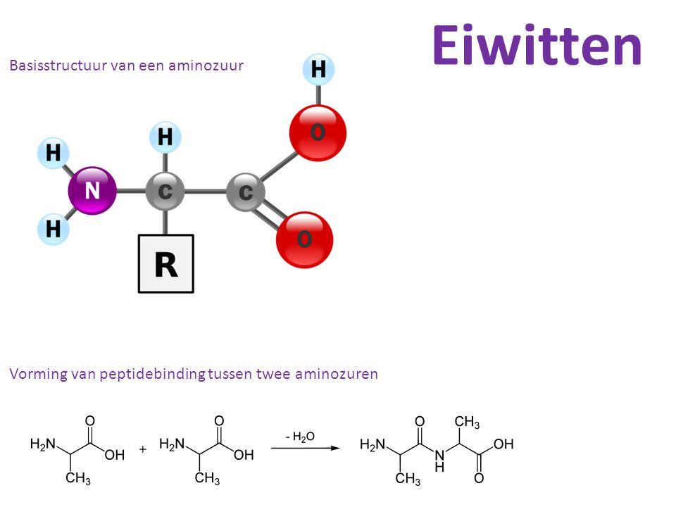 Eiwitten Basisstructuur van een aminozuur