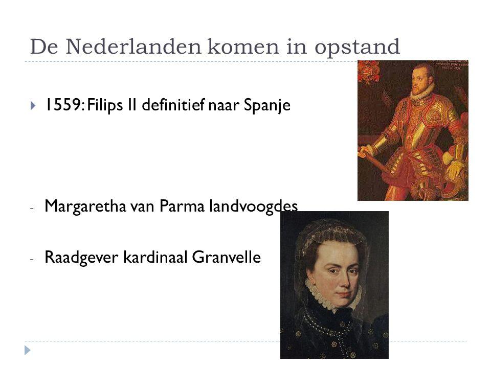 De Nederlanden komen in opstand