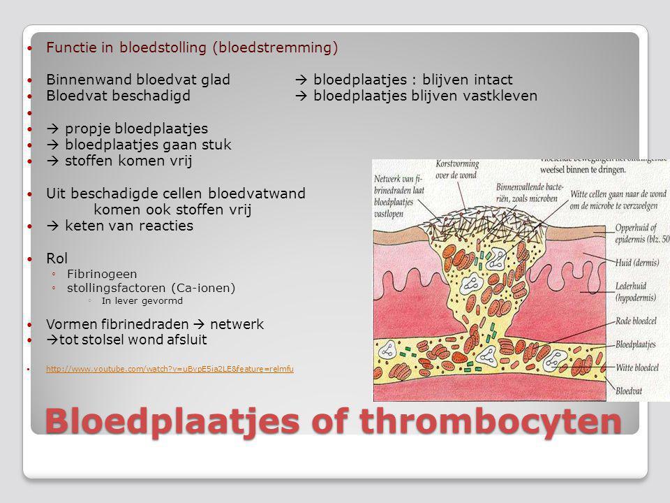 Bloedplaatjes of thrombocyten
