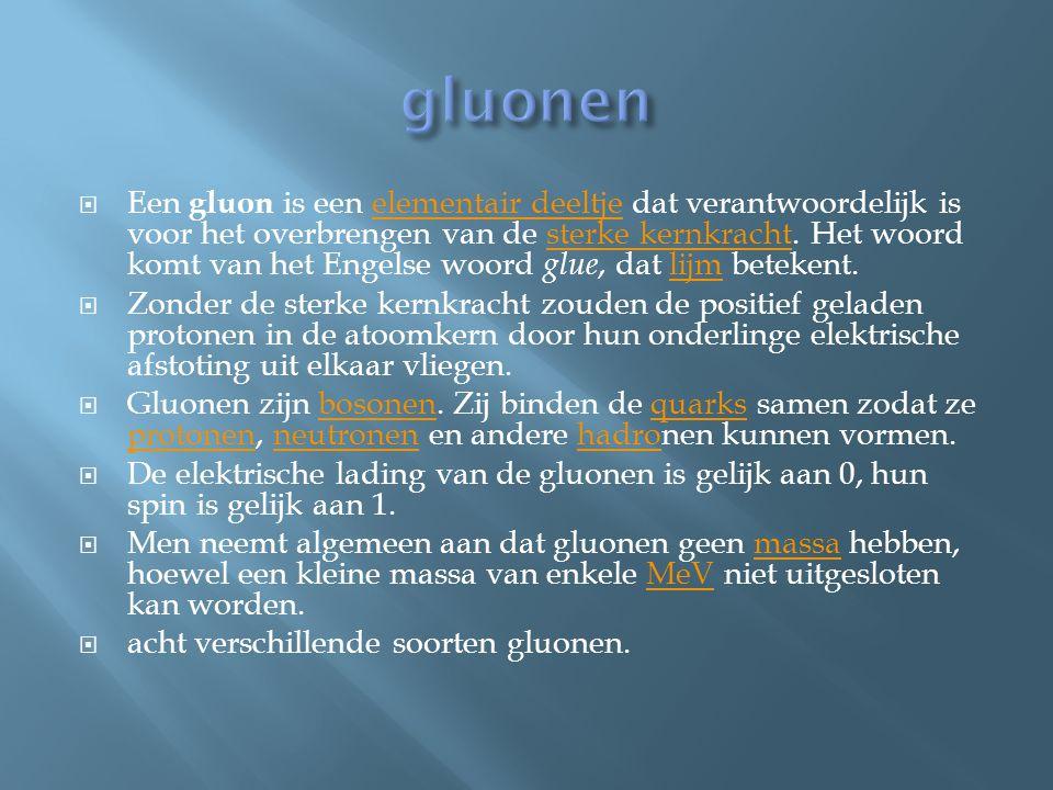 gluonen