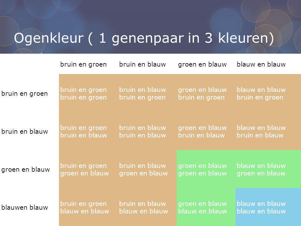 Ogenkleur ( 1 genenpaar in 3 kleuren)