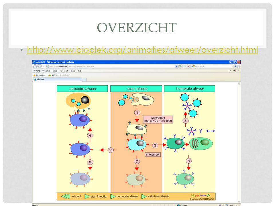 overzicht http://www.bioplek.org/animaties/afweer/overzicht.html
