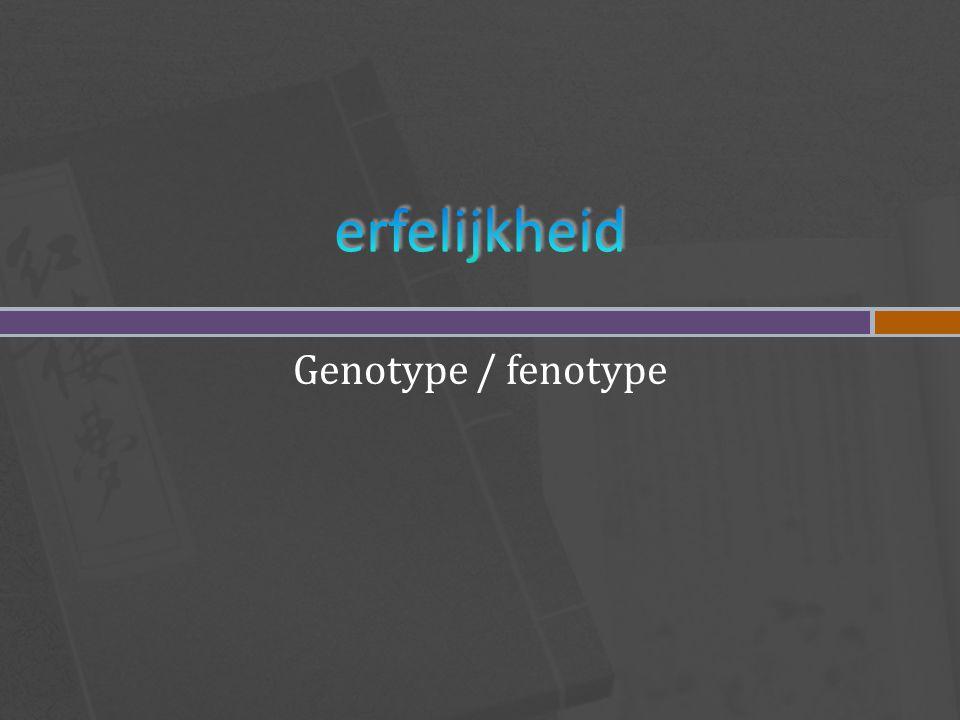 erfelijkheid Genotype / fenotype
