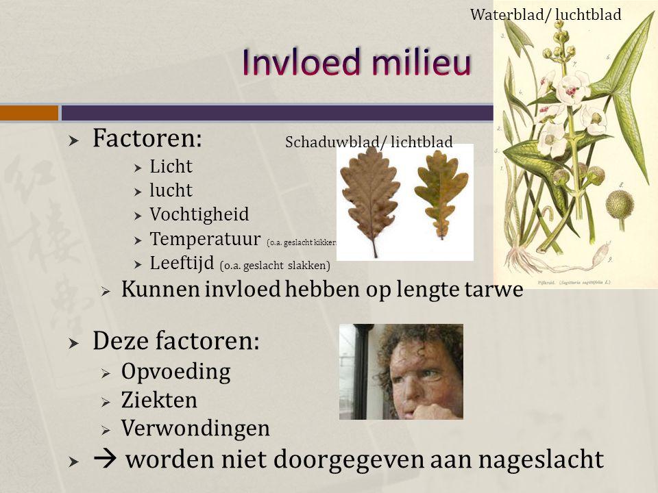 Invloed milieu Factoren: Deze factoren: