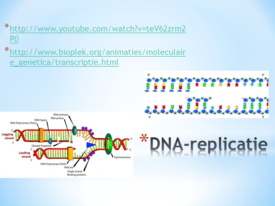 DNA-replicatie http://www.youtube.com/watch v=teV62zrm2 P0