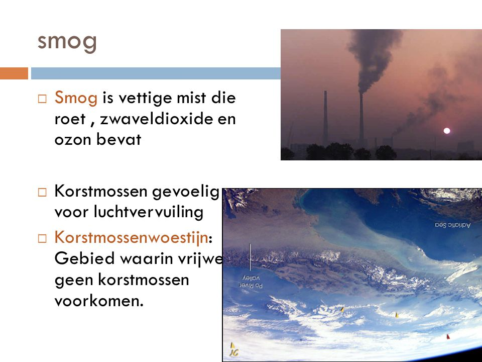 smog Smog is vettige mist die roet , zwaveldioxide en ozon bevat