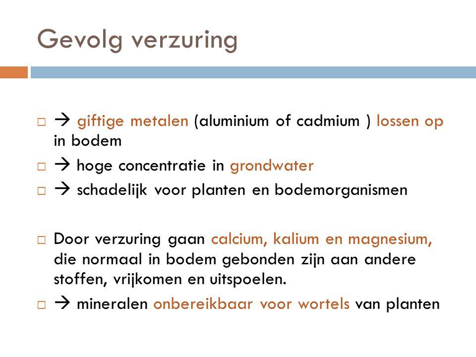 Gevolg verzuring  giftige metalen (aluminium of cadmium ) lossen op in bodem.  hoge concentratie in grondwater.
