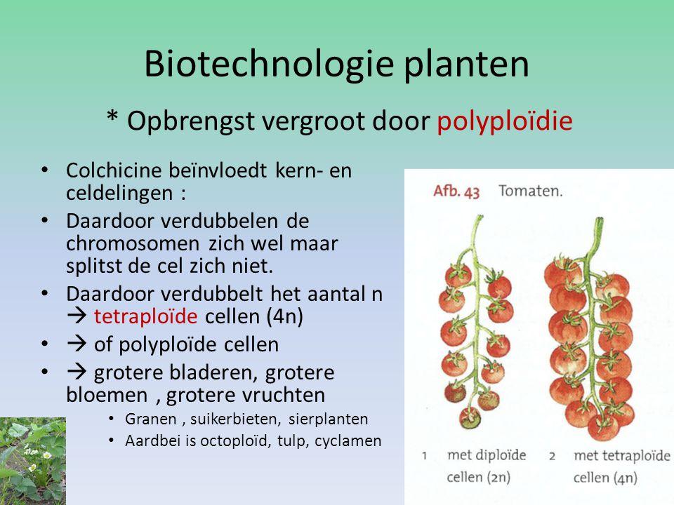 Biotechnologie planten