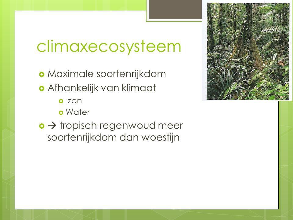 climaxecosysteem Maximale soortenrijkdom Afhankelijk van klimaat