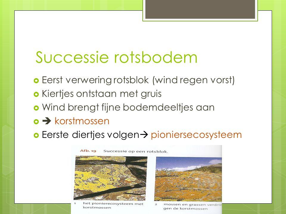 Successie rotsbodem Eerst verwering rotsblok (wind regen vorst)