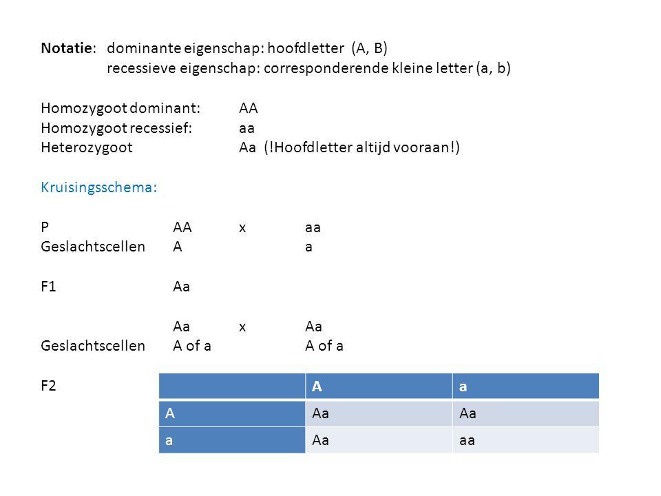 Notatie: dominante eigenschap: hoofdletter (A, B)