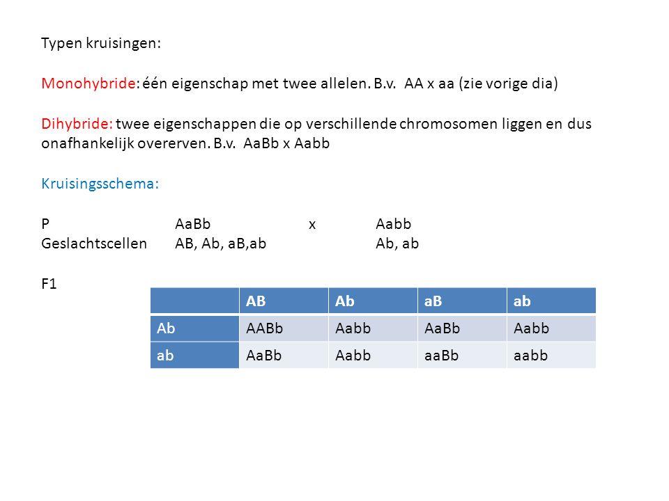 Typen kruisingen: Monohybride: één eigenschap met twee allelen. B.v. AA x aa (zie vorige dia)